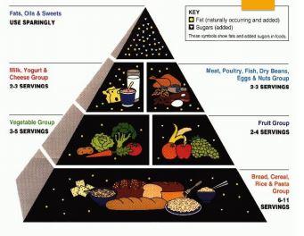 1992-usda Food Pyramid