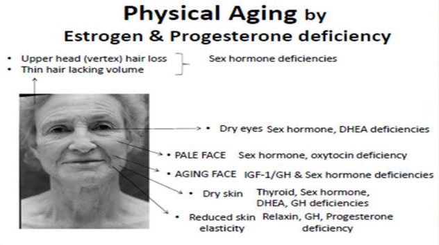 physical-aging-by-estrogen-and-progesterone