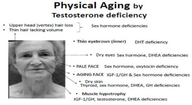 physical-aging-by-testosterone-deficiency