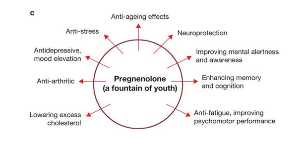 anti-ageing-effect