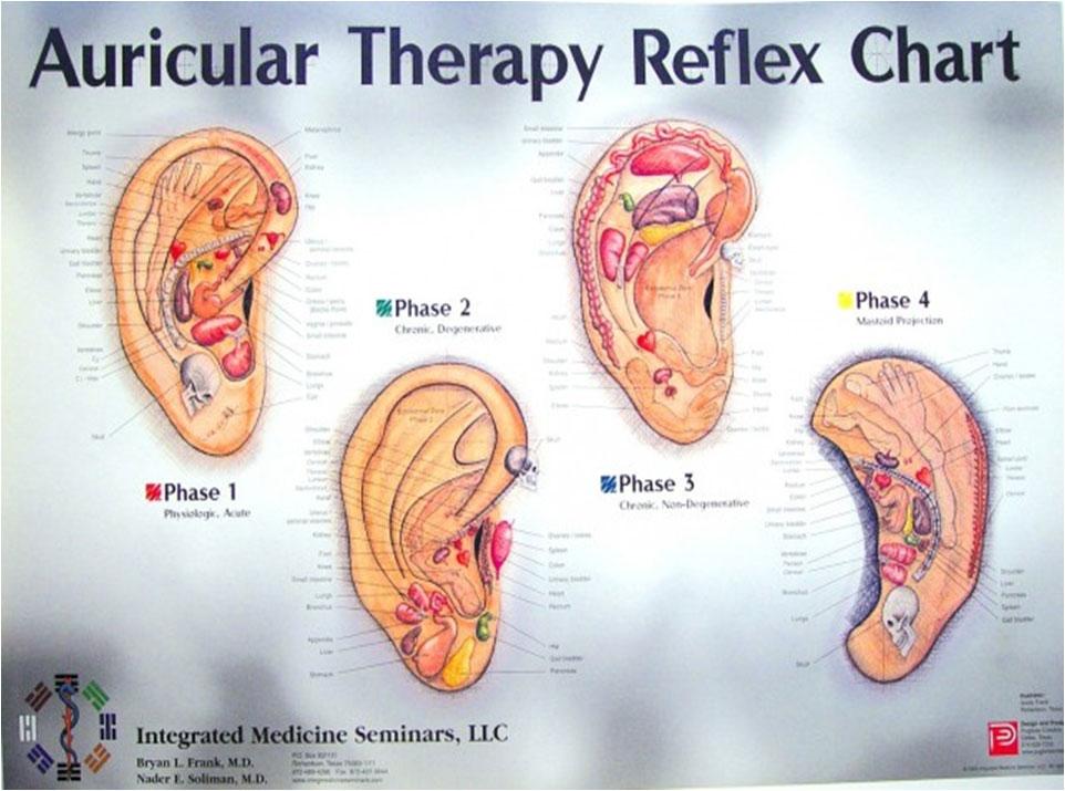 reflex chart